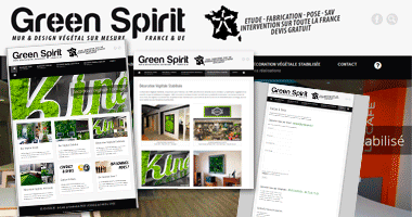 Site Internet | Green Spirit