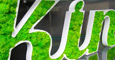 Logo végétal | Kiné