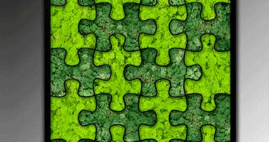 Tableau Végétal | Puzzle